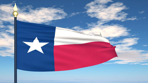 Flag of the state of Texas USA Animation