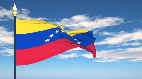 Flag Of Venezuela Stock Video Footage