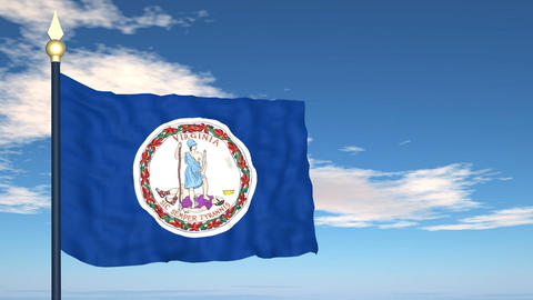Flag of the state of Virginia USA Stock Video Footage
