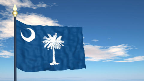 Flag of the state of South Carolina USA Stock Video Footage