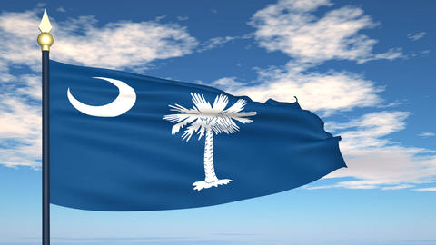 Flag of the state of South Carolina USA Animation