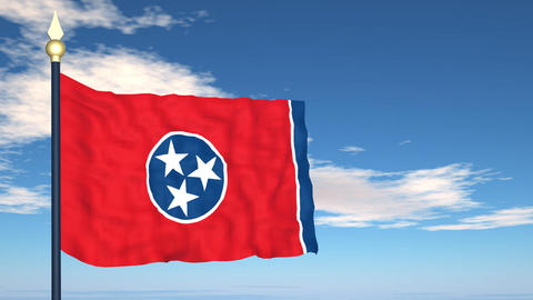 Flag of the state of Tennessee USA Stock Video Footage
