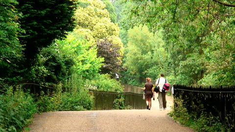 People walking down a pathway through trees in Paris, France Live Action
