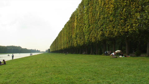 Long line of a shrubbery in the Versailles Palace gardens in France Footage