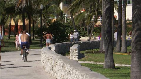 People walking, biking, rollerblading on a path in Miami Footage