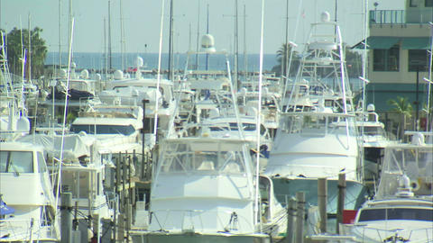 Boats moored at a marina in Miami Live Action