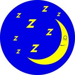 Night sleep icon Vector