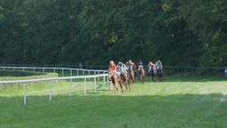 Horse racing Footage