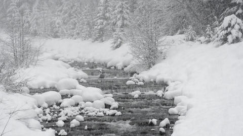 Heavy snow falls over a snow lined river Footage