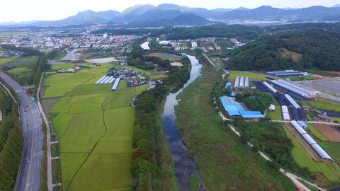 Aerial View of Gwanbangjerim Forest, Damyang, Jeollanamdo, South Korea Asia Live Action