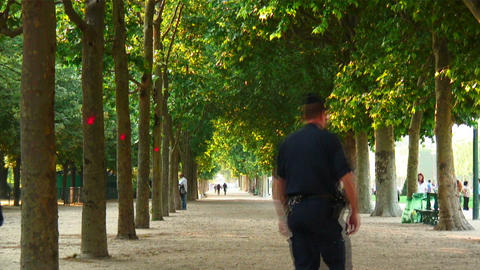 Path lined with trees in a European city Footage