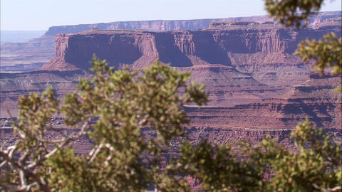 Desert landscape with plants in the foreground Footage