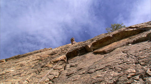 Mountain climber climbing up a cliff Footage