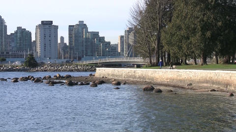 People walking in Stanley Park next to the beach Footage