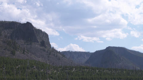 Mountains with a partially burnt forest Footage