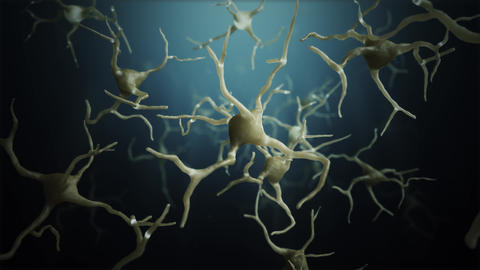 Loop Neuron cells connections world Animation