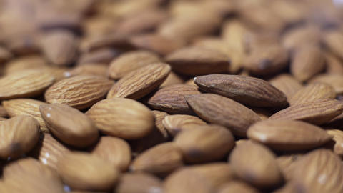 Almonds Footage