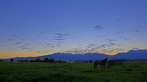 Time-lapse shot of a horse pasture in Utah with lens flare Footage