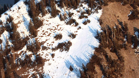 Aerial shot of pine trees on snow-capped mountain peaks in Utah Footage