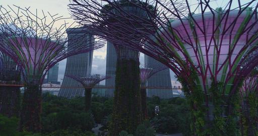 Lendmark Singapore garden Live Action