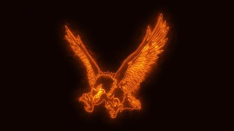 Orange Burning Eagle Animated Logo with Reveal Effect Animation