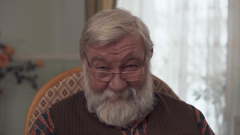 Portrait of an adult smiling grandfather with a big gray beard and a good look Footage