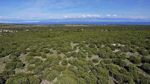 Aerial - Characteristic landscape of adriatic islands with vegetation of bushes Footage