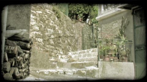 Back Steps 1. Vintage stylized video clip Live Action