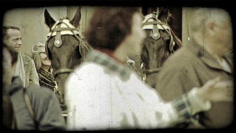 Horses pull carriage. Vintage stylized video clip Footage