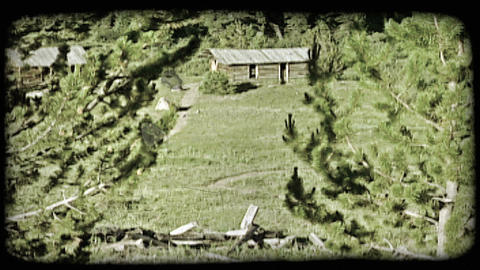Old cabin in forest. Vintage stylized video clip ライブ動画