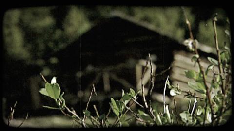 Old log cabin. Vintage stylized video clip ビデオ