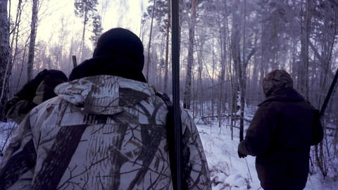 Hunters in the Woods. Armed Rangers in winter forest Footage