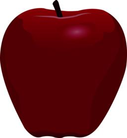A red apple vector illustration Vector
