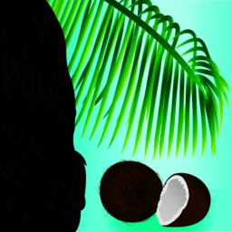Coconut tropical nut fruit palm leaf and beauty girl hair ベクター
