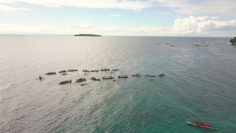 Aerial view boats with tourist people for feeding wild whale shark floating in Footage