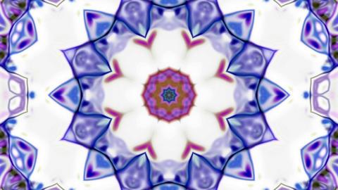 Super Beauty Flower Kaleido Loop Background Animation