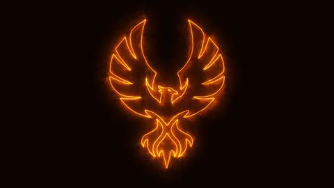 Orange Burning Phoenix Animated Logo with Reveal Effect Animation