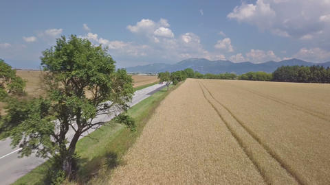 Aerial view of road traffic next wheat field in summer country Footage