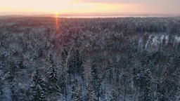 Aerial flight of a winter forest. flying over the snowy forests of the sun sets Footage