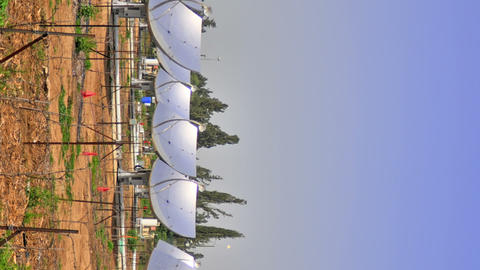 Vertical shot of Time-lapse shot of solar collectors tracking the movement of th Footage