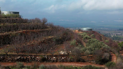 Stock Footage of a terraced orchard in the Golan Heights in Israel Footage