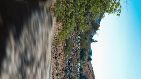 Vertical shot of Tracking shot of the Jordan River Live Action