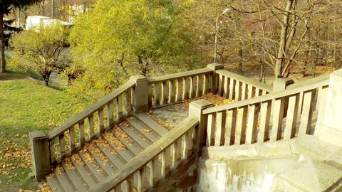 yellow fallen leaves on the steps, in the park. autumn mood. Cars and Footage