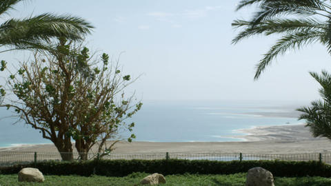 Royalty Free Stock Video Footage of palm trees and the Dead Sea shot in Israel a Footage
