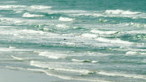 Royalty Free Stock Video Footage of Mediterranean waves shot in Israel at 4k wit Footage