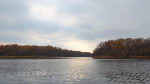 Autumn lake on the shore of the forest on a cloudy day Footage