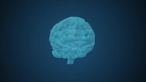 Brain GIF
