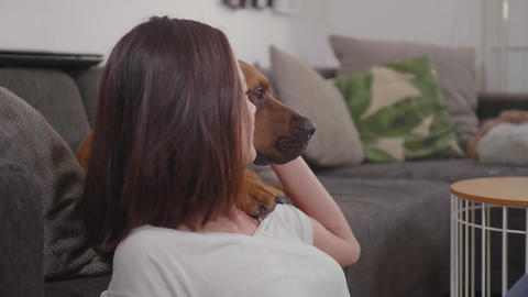 Young woman pets her dog while relaxing in the living room Stock Video Footage