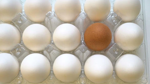 Lonely brown egg in box together with white ones. Difference concept Footage