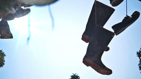 Shoes dangling from a tree Footage